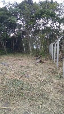 Bom Terreno No Jd. Guacira Em Itanhaém,confira!! 2258 J.a]