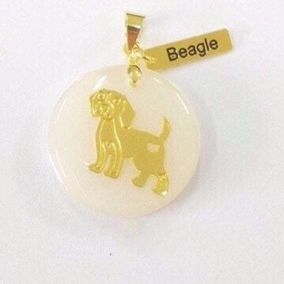 Colar Corrente Pet Beagle Dog Cachorro Folheada Ouro 18k