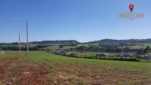 Imagem 1 de 11 de Área À Venda, 60000 M² Por R$ 7.800.000,00 - Centro - São Miguel Do Iguaçu/pr - Ar0003
