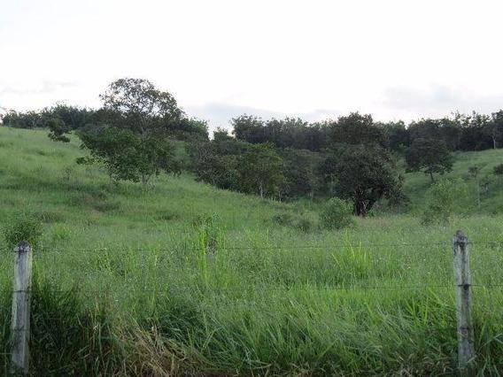Rural Para Venda, 0 Dormitórios, Dos Mottas - Guaratinguetá - 1096