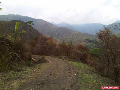 Haciendas - Fincas En Venta Guarico 0412-4520979
