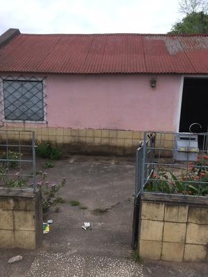 Alquilo Casa En La Ciudad De Treinta Y Tres