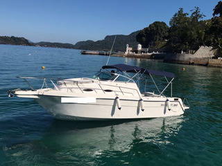 Wellcraft Wa 260 Mercruiser Mag 350 300hp 2011. Caiera