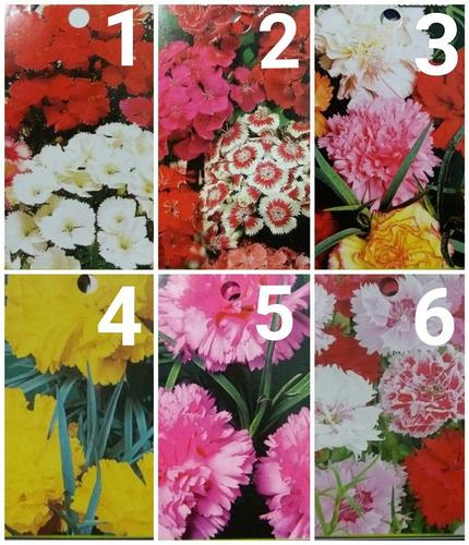Imagen 1 de 10 de Sobres De Semillas  Flores Varias