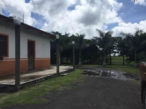 Venta De Rancho En Jonacatepec, Morelos Mexico