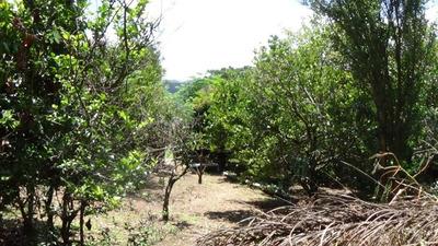 Terreno Em Jardim Dos Pinheiros, Atibaia/sp De 0m² À Venda Por R$ 280.000,00 - Te221646