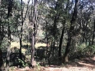 Excelente Terreno En Jilotzingo