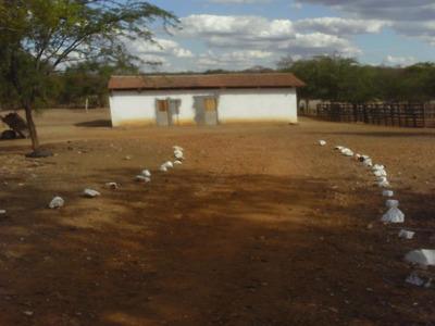 Fazenda Santa Paula - 226075