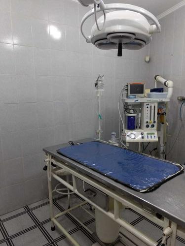 Hospital Veterinário Com Táxi Dog Em Santo André