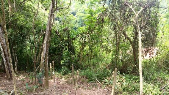 Terreno - Parque Dos Caetes - Ref: 6389 - V-6389