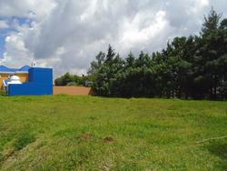 Citymax Vende Terreno En Carretera A El Salvador T