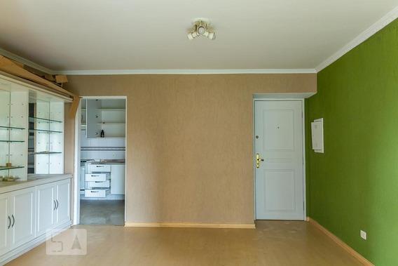 Apartamento Para Aluguel - Vila Mascote, 3 Quartos, 83 - 893000134