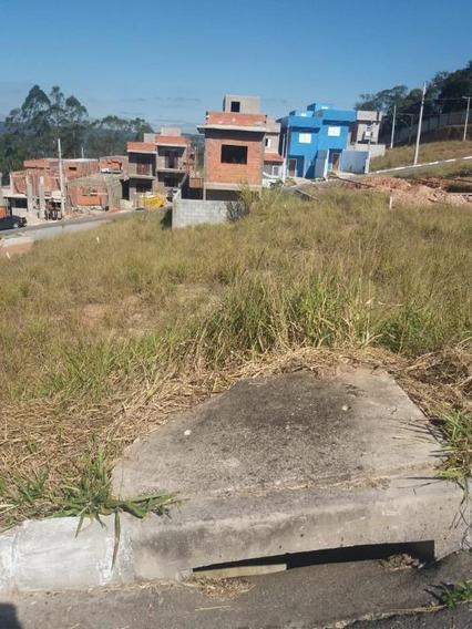 Terreno Em Chácara Santa Maria, Cotia/sp De 0m² À Venda Por R$ 100.000,00 - Te306817