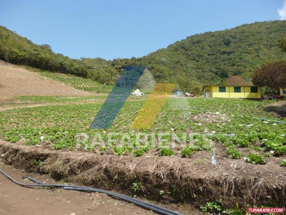 Terrenos En Venta, El Arenal