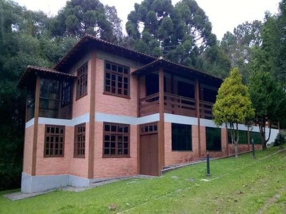 Área Rural Para Venda Em Campo Largo, Itaqui De Cima - 242