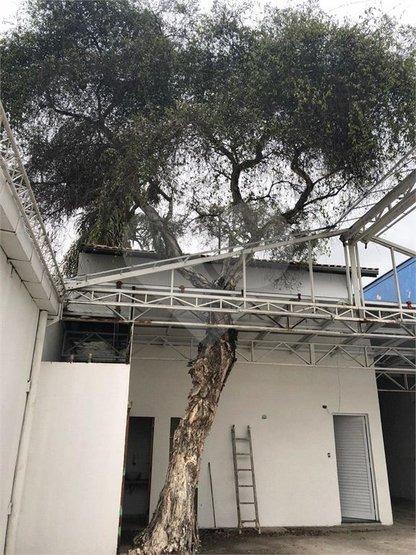 Jardim Paulista - Vendo Ou Alugo - Casa Comercial - 3-im201409