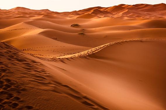 Fundo Fotográfico Tecido Deserto Do Saara 3,00m X 1,70m