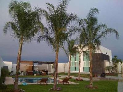 Casa En Venta Colonia Valle De Zuazua En General Zuaza
