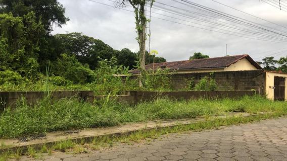 Terreno Para Casa Germinada-ref-tr22