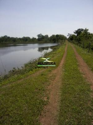 Fazenda Em Paracatu Mg  200 Ha Gado Pecuária Agricultura - 220