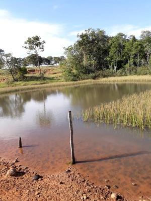 Fazenda A Venda Em Sidrolândia - Ms (agricultura) - 1080