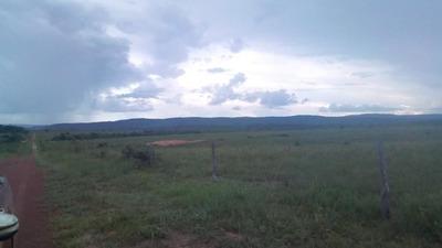 Fazenda Para Venda Em Cumaru Do Norte, Área Zona Rural Cumaru Do Norte/pa R$ 766.000.000 - 36683