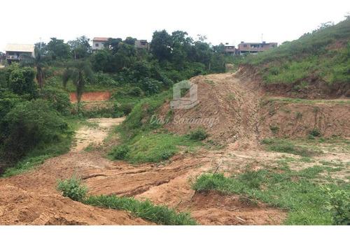 Imagem 1 de 22 de Terreno Amplo Para Desenvolvimento Imobiliário. - Te0019