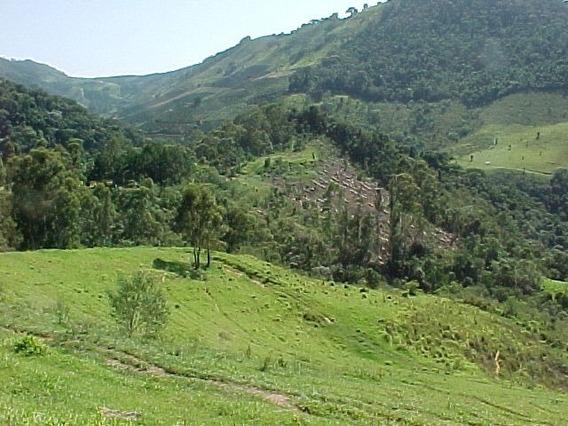Rural Para Venda, 1 Dormitórios, Serra Negra - Água Mineral - Serra Negra - 495