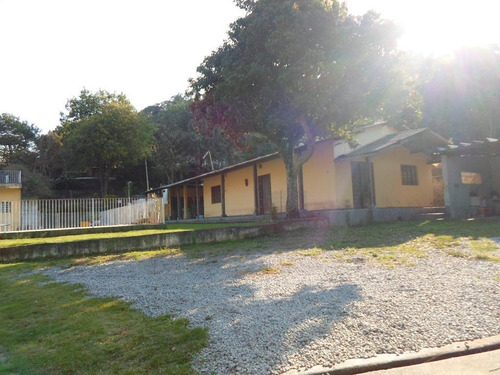 Terreno Residencial À Venda, Vila Clarice, São Paulo - Te0242. - Te0242