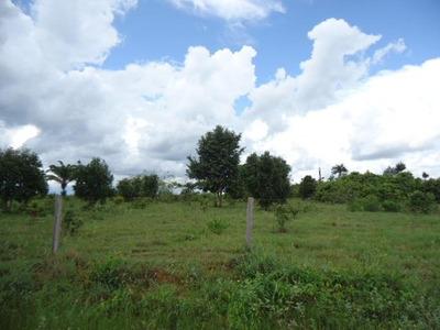 Fazenda Em Xingu - Pará, P/ Pecuária - 123