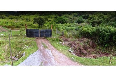 Terreno Terraza De Los Paños Ii - San Antonio