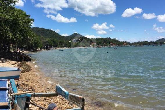 Terreno, Investimento, Praia, Litoral, Penha, Trapiche, Praia Grande, Construção. - Te00004 - 33663401