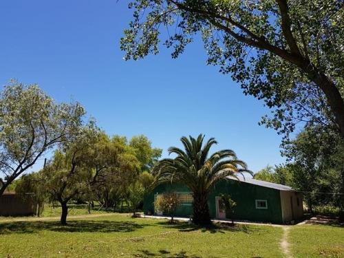 Casa +deposito De Grandes Dimensiones +una Hectarea De Campo