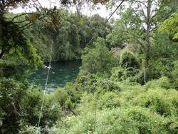 Parcela En El Sur 10.000mt En Borde Del Río Bueno