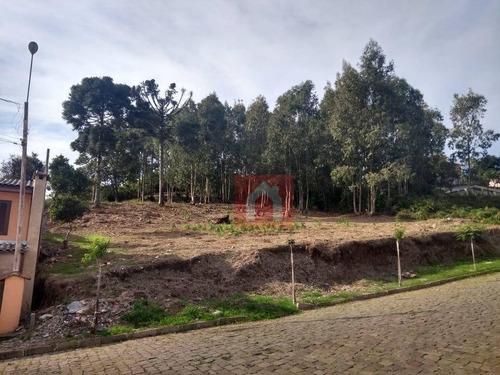 Terreno À Venda, 988 M² Por R$ 350.000,00 - Chácaras - Garibaldi/rs - Te0123