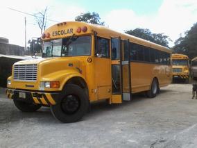 Venta De Camiones Escolares