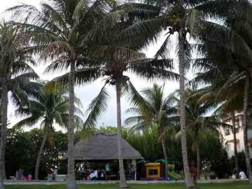Departamento En Venta. Residencial Isla Bonita Zona Hotelera - Poktapok