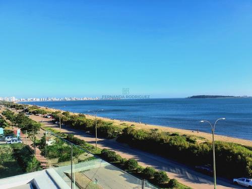 Ed. Horizonte, El Mar En Tu Sala! - Ref: 117