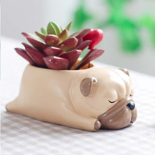 Vasos Pets Stl Impressão 3d 6 Modelos + 4 Brindes Vasos