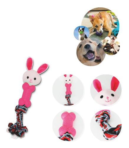 Pet Corda Com Brinquedo Sortido -  Cor:rosa