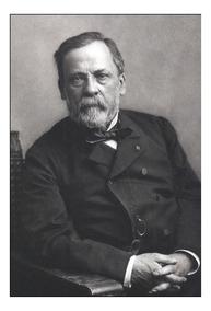 Quadro Decorativo Louis Pasteur Cientista 42x29cm