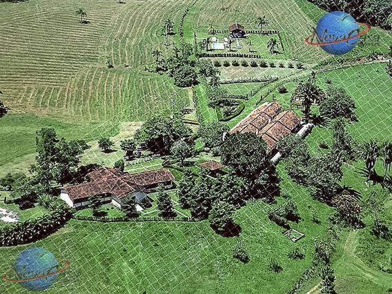 Fazenda Rural À Venda, Pariquera, Pariquera-açu. - Fa0001