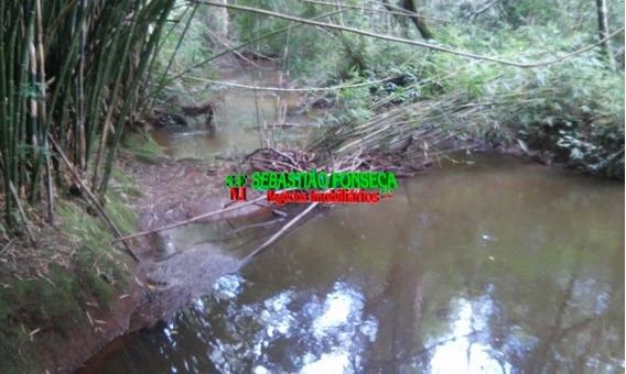 Pequena Chácara Em Paraibuna, Com Nascente De Água, Riacho - 839