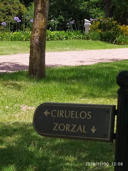 Jardin De Paz , Ramal Pilar
