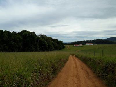 Fazenda Com 99,2 Ha No Sul De Minas , Cidade De Seritinga, Próximo Asfalto , Bom De Água, Terra Mecanizada. - 3770