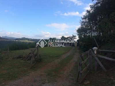 Sitio - Sao Luiz De Castro - Ref: 261173 - V-261173