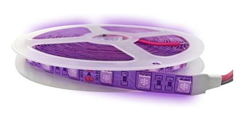Tira Led 5050 Ultravioleta Luz Negra 1 Metro Interior 12v