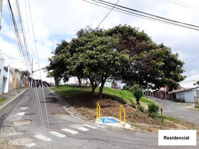 Alquiler Apartamento - Guadalupe - Ipis - Goicoechea