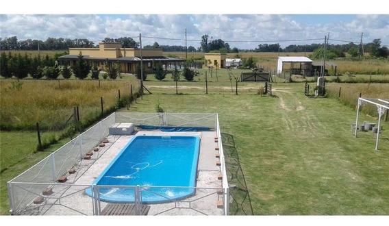 Casa Quinta -venta - Brandsen - 3 (tres) Ambientes