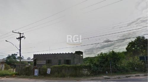 Terreno Em Bela Vista - El50874348